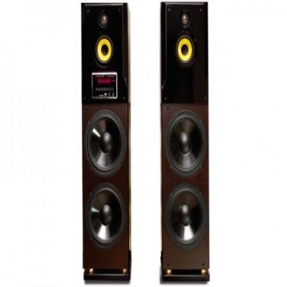 Active Speaker  Active Speaker 5110N